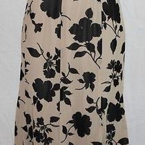 New Karen Kane Champagne Fluted Skirt Women L Large 98 Black & Beige Photo