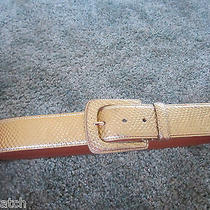 New Lauren Ralph Lauren Gold Leather Belt  Size Large 64 Photo