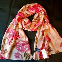 New Max Edition Fall Blush Pink Scarf Roses Chiffon Wrap Oblong 72