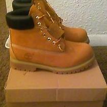 New Mens Timberland Premium Boots Wheat Size 8 Photo