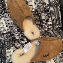 New Mens Ugg Suede Slippers Shoes Size 12 Free Shipping Photo