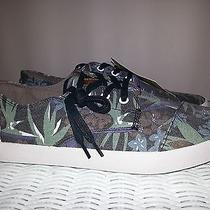 New Mens Toms Paseos Washed Birds of Paradise Size 9.5 Photo