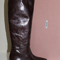 New Miu Miu / Prada Pointed Toe Brown Leather Knee High Flat Boot Shoes 9 / 39 Photo
