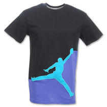 New Nike Jordan Jumpy Tee Shirt Grape 5 Aqua 8 Concord 11 Xi 437269 (Size Small) Photo