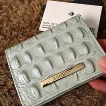 New Nwt Brahmin Mini Wallet Sea Glass Pale Green Leather Croc Melbourne  Photo