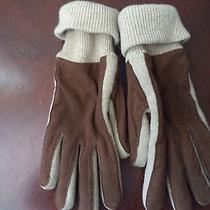 New Nwt Mens Sz L to Xl Ralph Lauren Leather Thinsulate Insulation Brown Gloves Photo