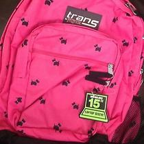 New Nwt Scotty Dog Jansport Trans Backpack Supermax Pink and Black New With Tags Photo