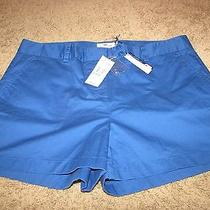 New Nwt Vineyard Vines