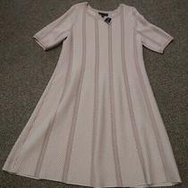 New Nwt Womens Plus Size 14/16 Lane Bryant Sweater Dress Office Wear Beautiful Photo