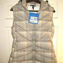 New Patagonia Vest Down Photo