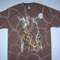 New Polar Graphics  M  Brown Giraffe Steven Michael Gardner Cotton T-Shirt Usa Photo