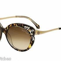 New Roberto Cavalli Homam 900s 52f Havana Brown Sunglasses Photo