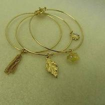 New Shine Set of Three Bracelets Photo