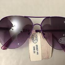 New Steve Madden Purple Aviator Women's Sunglasses Sun Glasses S5357 Photo
