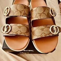 New Therapeutic Coach-Gable Sandals With Box -Size 5 (Fit 6)khaki/ Ivory Logo. Photo