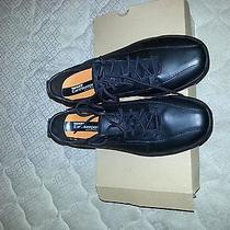 New Timberland Shoes With Tag and Box Photo