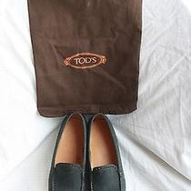 New Tods Driving Mocs  Photo