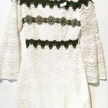 New Topshop Holiday Dress Womens White Black Lace Overlay Fit and Flare Size 6  Photo