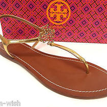 New Tory Burch Gold Size 9 1/2 Ankle Strap Sandals 9.5 Shoes W/ Logo Photo