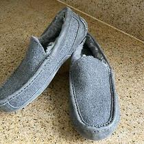 New Ugg Ascot Men's Slippers/moccasins Size 8 Photo