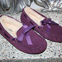 New Ugg Australia Dakota Exotic Scales Slippers Womens Us 6  Eu 37 110 Purple Photo