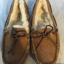 New Ugg Australia Dakota Slipper Chestnut Suede Women Size 5 110    Photo