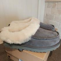 New Ugg Australia Grove Women's Slippers Size 7  Charcoal Photo