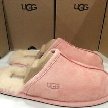 New Ugg Australia Pearle Blush Scuffett Shearling Lined Women's 5 Slippers 100 Photo