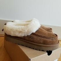 New Ugg  Australia Womens Grove Slippers Cheyenne Size 6 Photo