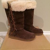 New Ugg Boots With Box Photo