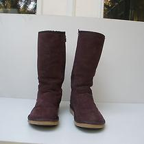 New Ugg Classic Sunset Ii Purple/raisin Size 10 Fashion Tall Suede Boots Photo