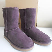 New Ugg Women's Boots Classic Short Port 5825 W/port Sheepskin Suede Us 7 Photo