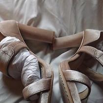 New Vince Camuto Robeka Blush Pink Velvet Platform Sandal Photo