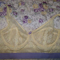 New W/tags Topshop Lovely European Style Mesh Lace Bow 34b Amazing Bra Photo