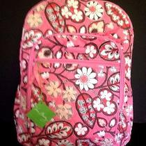 New With Tag Vera Bradley  Pink Blush Campus Backpack Book School Bag  Photo