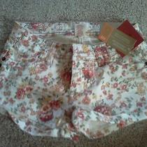 New With Tags Mossimo Printed Shorts Size 1 Photo