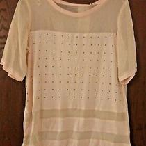New With Tags Next Blush Jersey Top With Sheer Panels. Size 8 Photo