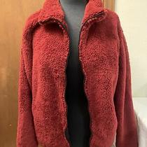 New With Tags Victoria Secret Pink Teddy Full Zip Jacket Sweater Sz Large Photo