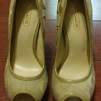 (New Without Box) Coach Breana Peep Toe Cream/tan Platform Heels (Size 5.5b) Photo