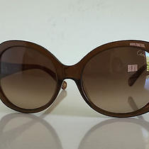 New Women Coach Women  Sunglasses Brown Photo