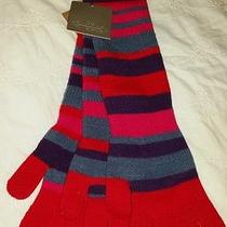 New Women's Anthropologie Lost and Found Set of 3-14.5 Inches Long Gloves Wool  Photo