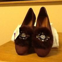 New Womens Shoes by Schutz With Box Photo