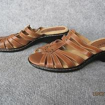 New Womens Softspots Layla Vegan Leather 6.5 Sandals Slides Shoes Slip-Ons Brown Photo