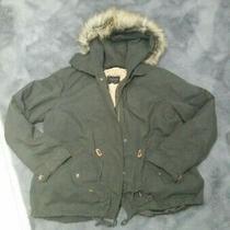New Zara Khaki Green Parker Teddy Jacket  Size Large 12/14 Photo