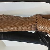 Nib 2750 Chloe Anniversary Edition Python Back Zip Knee Boot Shoes  Bag  Photo