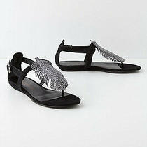 Nib Anthropologie Feather Leather Sandals Sz 7.5 Dani Black Wedge Rare Photo
