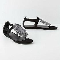 Nib Anthropologie Feather Leather Sandals Sz 7.5 Dani Black Wedge Rare Photo