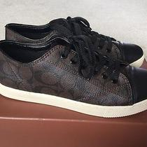 Nib Coach Q6733 Parkway Sneaker Shoes Sz 8m Brown-Mahogany/black Photo
