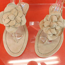 Nib Prada Nude Blush Suede Big Flower Flats Thongs Sandals 37.5 7 430 Photo