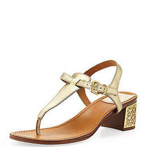 Nib Tory Burch  Audra Leather Plate-Heel Thong Sandals Shoes Platinum 10 M 40 B Photo